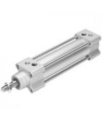 Standard cylinder DSBG